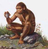 Cincuenta años de Homo Habilis