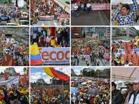 Galería de Fotos de la Gran Toma a Bogotá