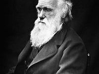 La importancia de Darwin en la historia intelectual de occidente (Darwin's Import in Western Intellectual History)